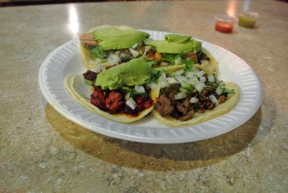 Cactus-#2-Tacos